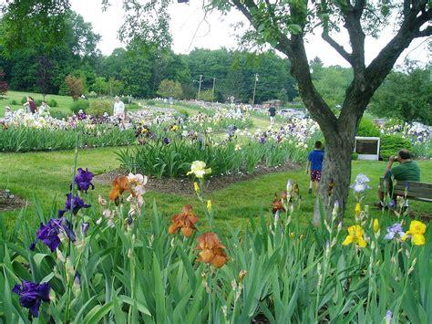 Presby Iris Garden by Presby Memorial Iris Gardens
