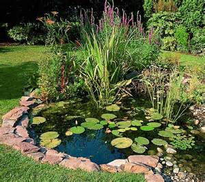 pond now is the ideal time to build a wildlife