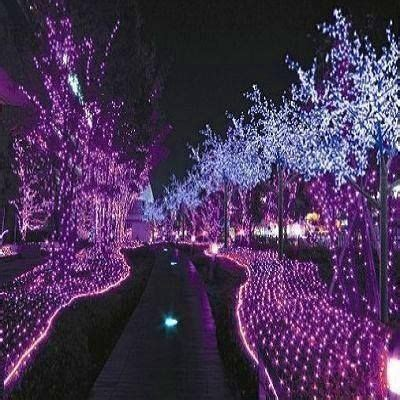 white tree purple lights 404 best images about christmas lights on pinterest