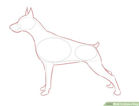 draw realistic puppy how to draw realistic dogs step by step www imgkid the image kid has it