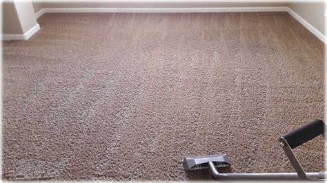 upholstery cleaning roseville ca roseville carpet cleaning carpet menzilperde