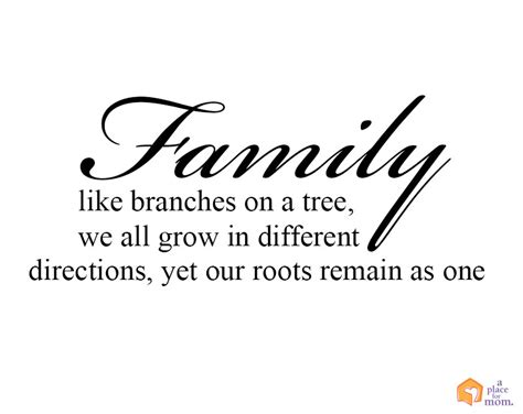 are you a branch on our family tree us history family like branches in a tree we all grow in different