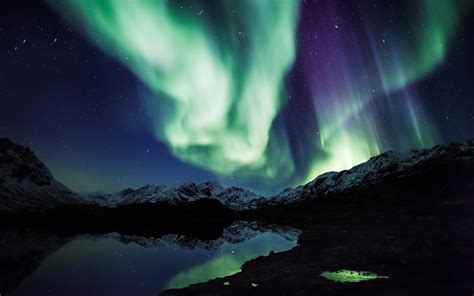 awesome polar lights wallpaper 5061 2560 x 1600
