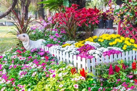 flowers for your garden 10 most beautiful flowers you really need in your garden