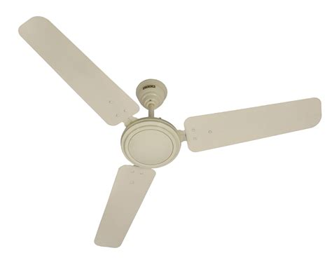 Which Way Should Ceiling Fan Spin by Which Way Should A Ceiling Fan Spin Ceiling Fan Spin