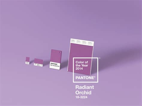 color of the year 2014 pantone color of the year for 2014 pantone 18 3224