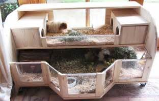 Handmade Hutches Make Your Own Guinea Pig Cage Abyssinian Guinea Pig Tips