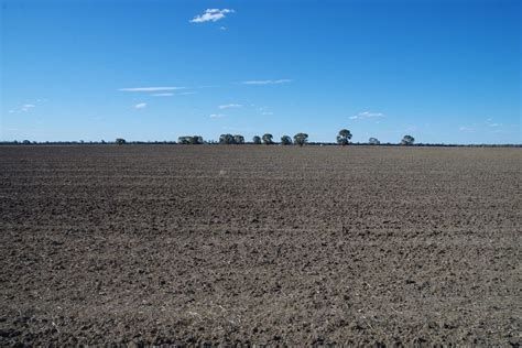 nuable road narrabri nsw  farm  sale