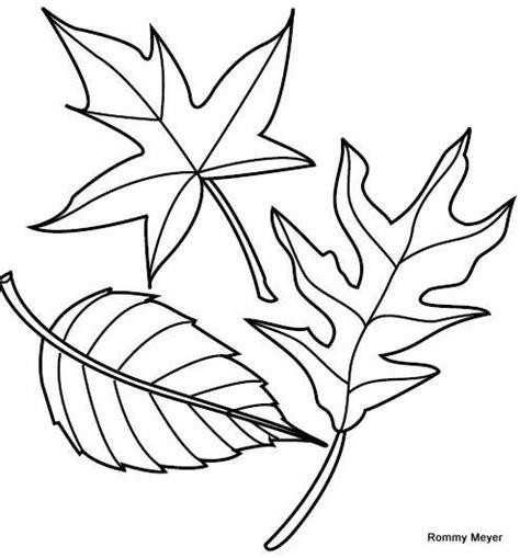 hojas de otono coloring pages hojas oto 241 o colorear buscar con google oto 209 o
