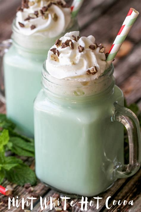 frozen mint hot chocolate recipe frozen hot chocolate
