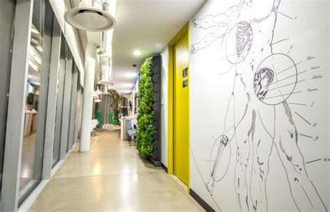 design milk mexico city a corporate office in mexico city that looks fun to work