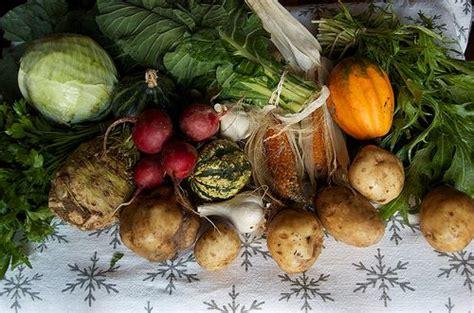 alimenti fanno dimagrire le cosce radici invernali per dimagrire funzionano davvero