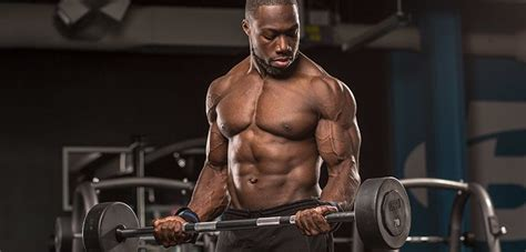 the best body building shoo 10 best muscle building biceps exercises