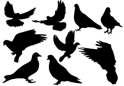 silhouette vector free pigeon silhouette vector download free vector art