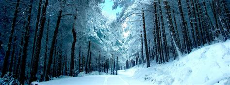 Houston Ford Pine River Mn by Where To Service Vehicles For Winter In Pine River Mn