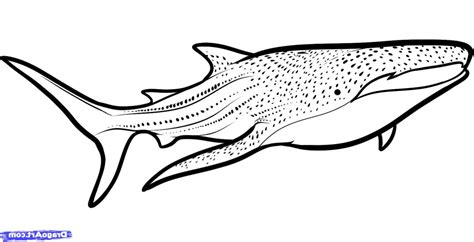 Free Shark Clipart Black And White