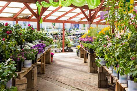 dc area garden center chains    plant