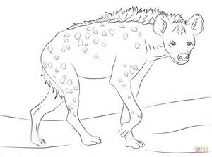 Hyena Coloring Pages spotted hyena coloring page free printable coloring pages