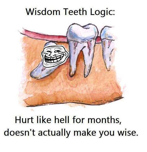 Wisdom Teeth Meme - endodontic gutta percha composition