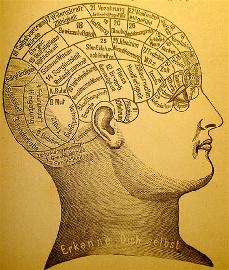 i am not a brain philosophy of mind for the 21st century books philosophy of mind