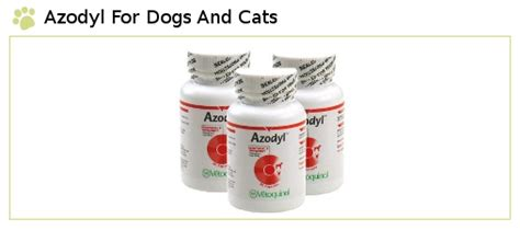 azodyl for dogs azodyl for dogs and cats best pet supplies