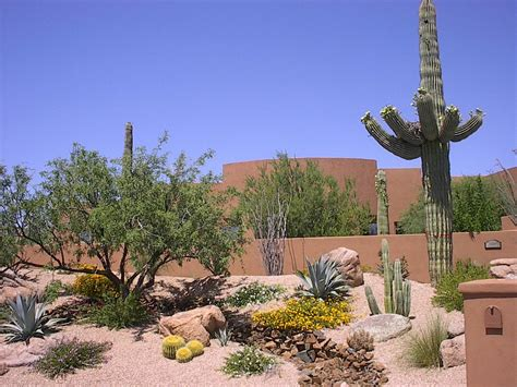 beautiful desert landscaping ideas designoursign