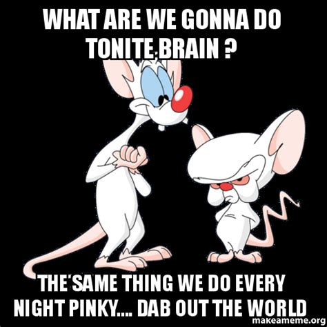 Pinky Meme - what are we gonna do tonite brain the same thing we do