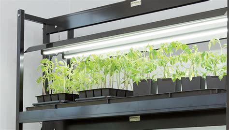 gardening  grow lights gardeners supply