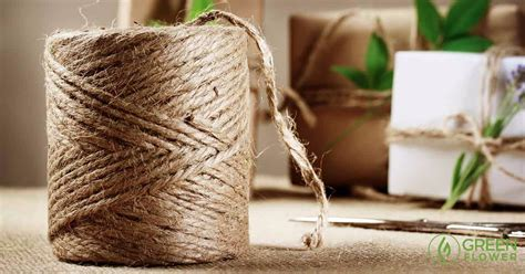 How To Make Paper Out Of Hemp - 25 things you didn t could be made from hemp