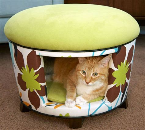 cute cat beds cute cat beds www pixshark com images galleries with a bite