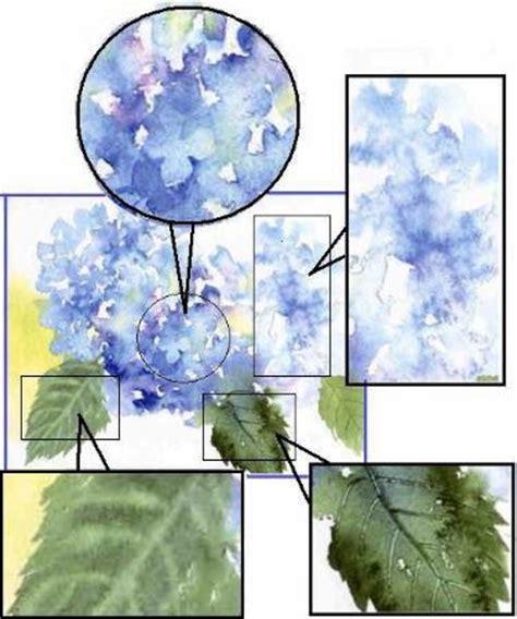 watercolor hydrangea tutorial hydrangeas watercolor painting tips diy crafts