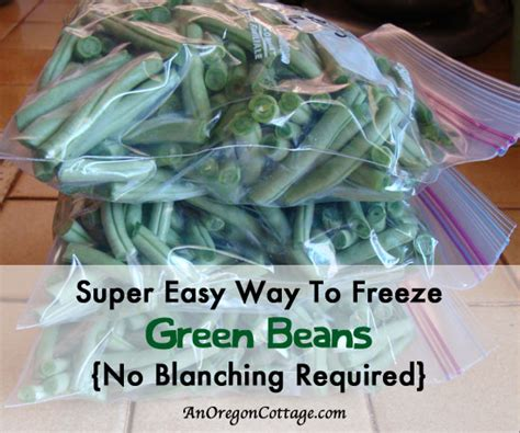 how to freeze green beans without blanching an oregon cottage