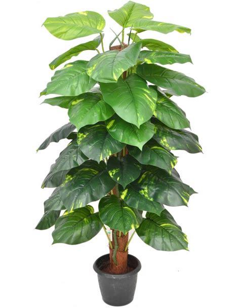 Vertical Garden Online - artificial money plant online money plant artificial in india chhajedgarden com