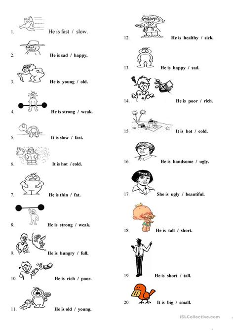 adjective patterns english exercises physical appearance worksheet free esl printable