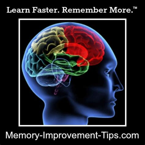 brain techniques for memory improvement and critical thinking lightning librarian free brain