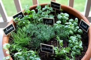 Corner Bookshelf For Kids 15 Phenomenal Indoor Herb Gardens