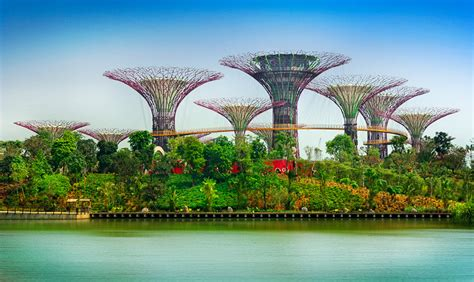 Singapore Gardens By The Bay by 301 Moved Permanently