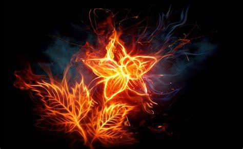 imagenes de calaveras en llamas 3d fondo escritorio flor en llamas