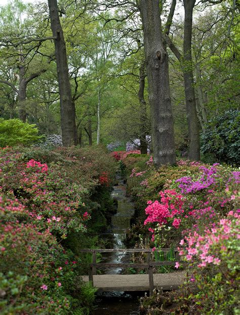 richmond park richmond park