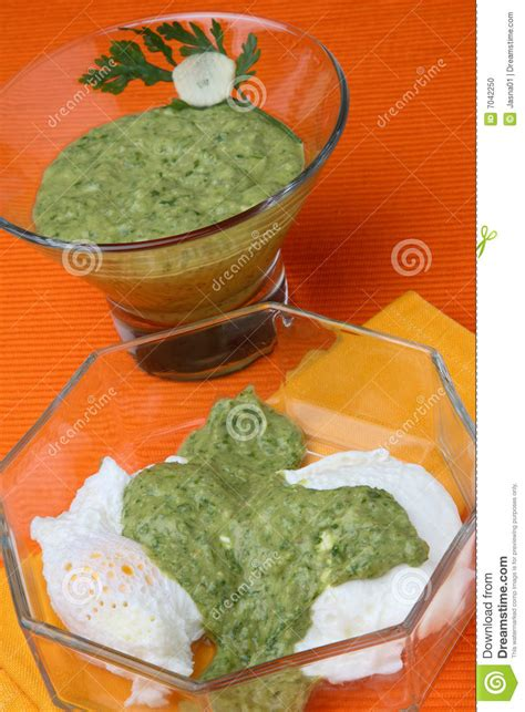 cottage cheese sauce salsa verde and cottage cheese sauce stock photo image