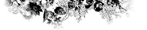 Header Design Black And White | sarah renee woodall welcome to my online portfolio