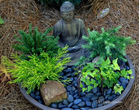 small zen garden the graceful gardener 187 blue and white container