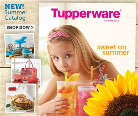 Tuppewere Summer 18 best images about tupperware catalogs and sales flyers