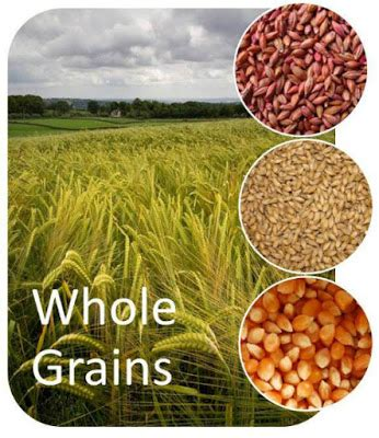 whole grains a z whole grains for weight loss fitness tips
