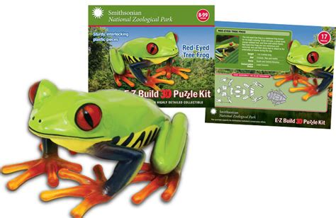3d Puzzle Frog By Bimbozone wowtoyz smithsonian e z build 3d puzzles zoo marine