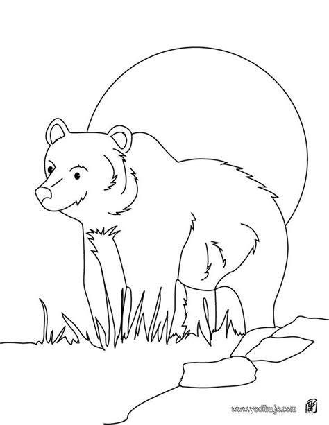 imagenes para pintar oso dibujos para colorear oso pardo es hellokids com