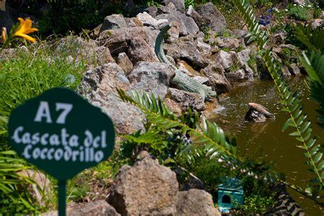 giardino la mortella giardini la mortella grand hotel terme di augusto ischia