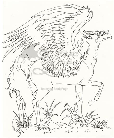 hippogriff coloring page hippogriff coloring pages coloring pages
