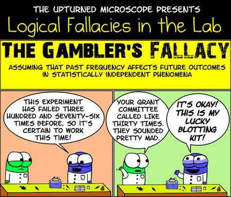 exle of logical fallacy logical fallacies in the lab relatively interesting