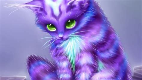 wallpaper abstract cat fantasy kitty coat purple cat eyes abstract hd wallpaper